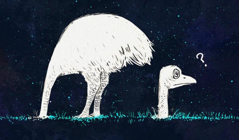 Opinión | El jefe avestruz