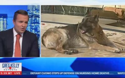 Presentador e invitado de Newsmax expresan críticas sobre el perro de Biden