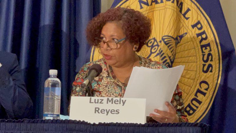 Luz Mely