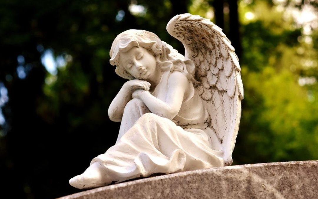 Opinión   ¿Hay ángeles en su vida?