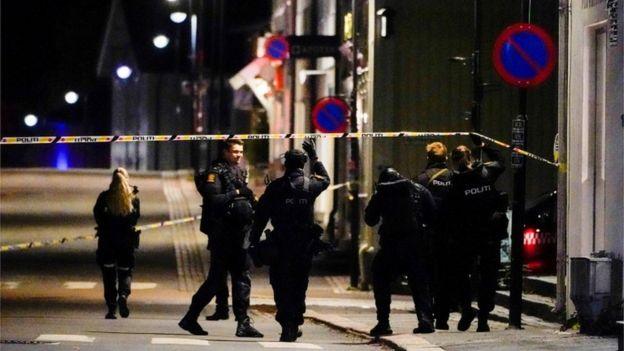 Noruega: al menos 5 muertos tras el ataque de un hombre armado con arco y flechas en Kongsberg